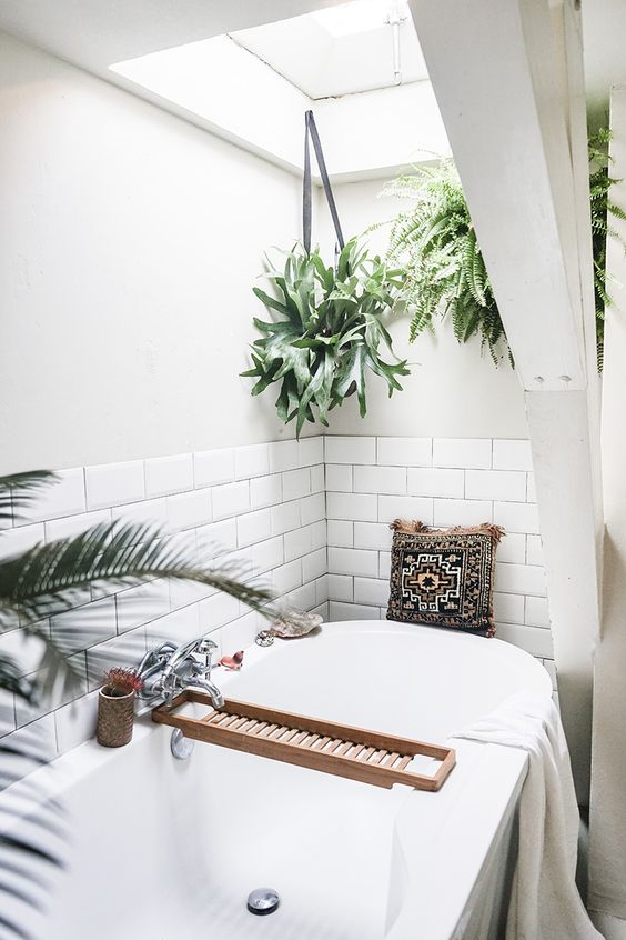 Small bathroom decorating ideas - hanging bathroom potted plants