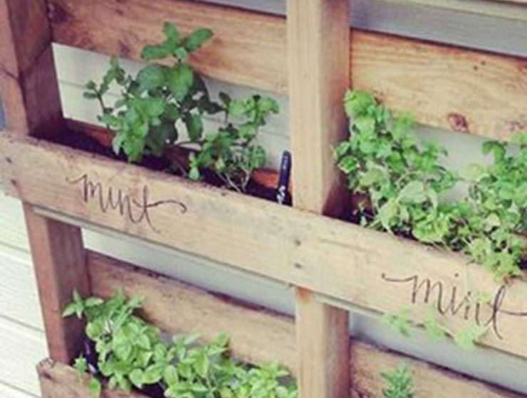outdoor herb garden vertical crates