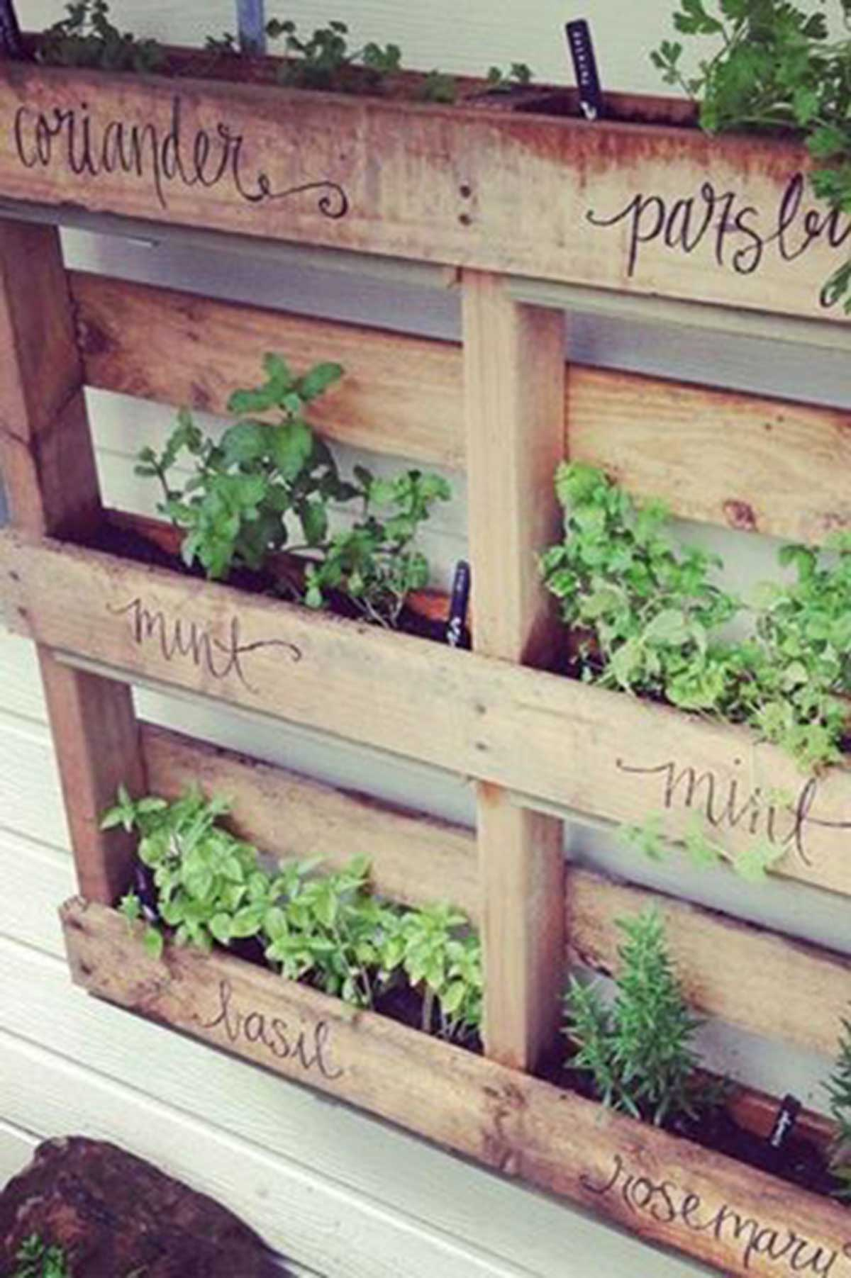 Herb garden ideas- Nine ways to create a happy herb garden