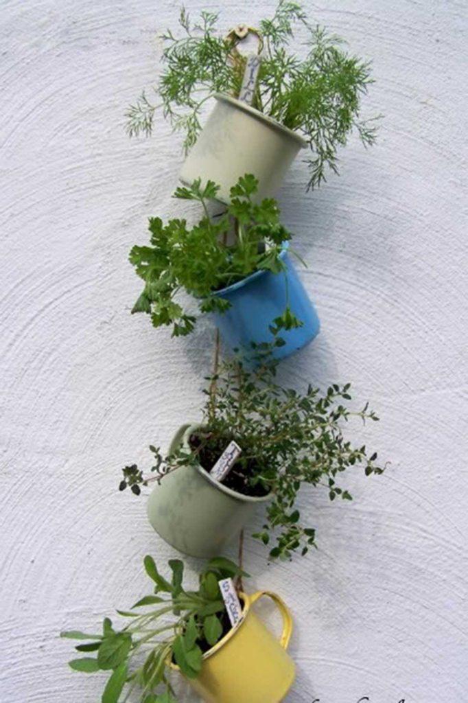 outdoor herb garden mug planters