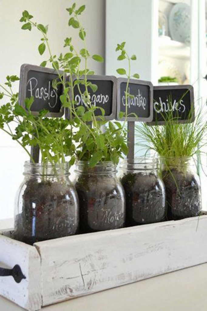 outdoor herb garden herbs in glass jars