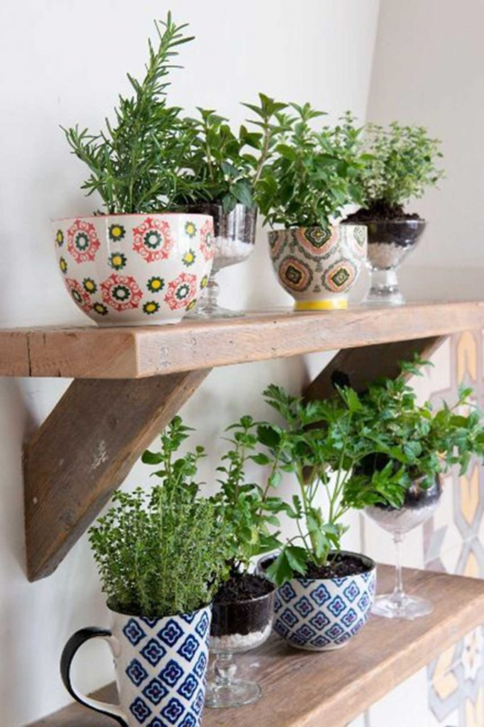 outdoor herb garden in kitchenware