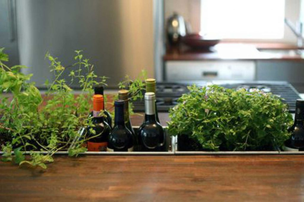 kitchen herb sunken garden