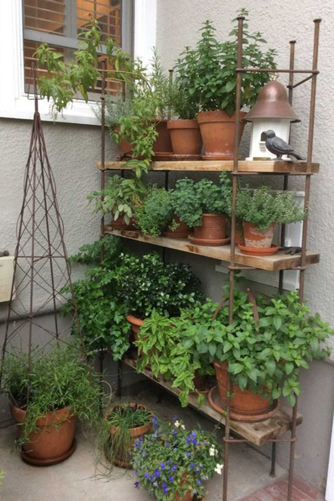 shelving outdoor herb garden