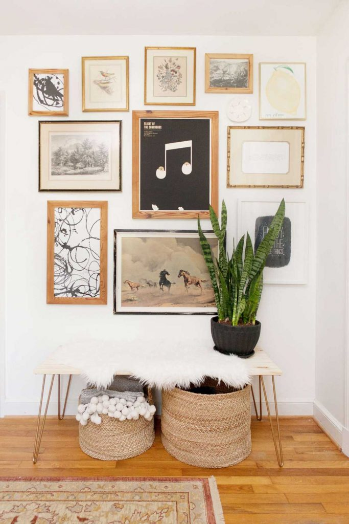 plants with frames