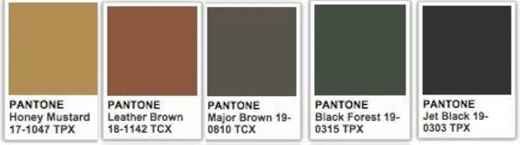 tribal interior design pantone colours